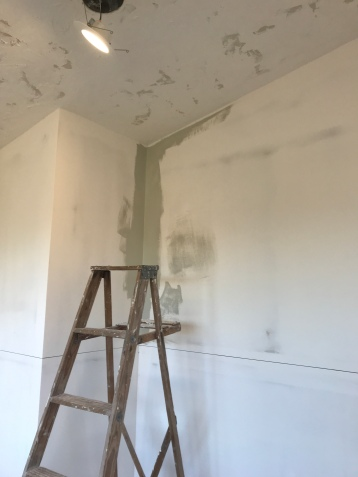 Room with level five mudded walls and textured ceiling with a line diving the top half and bottom half of the wall, and an old ladder next to a corner that has been painted with green gray paint