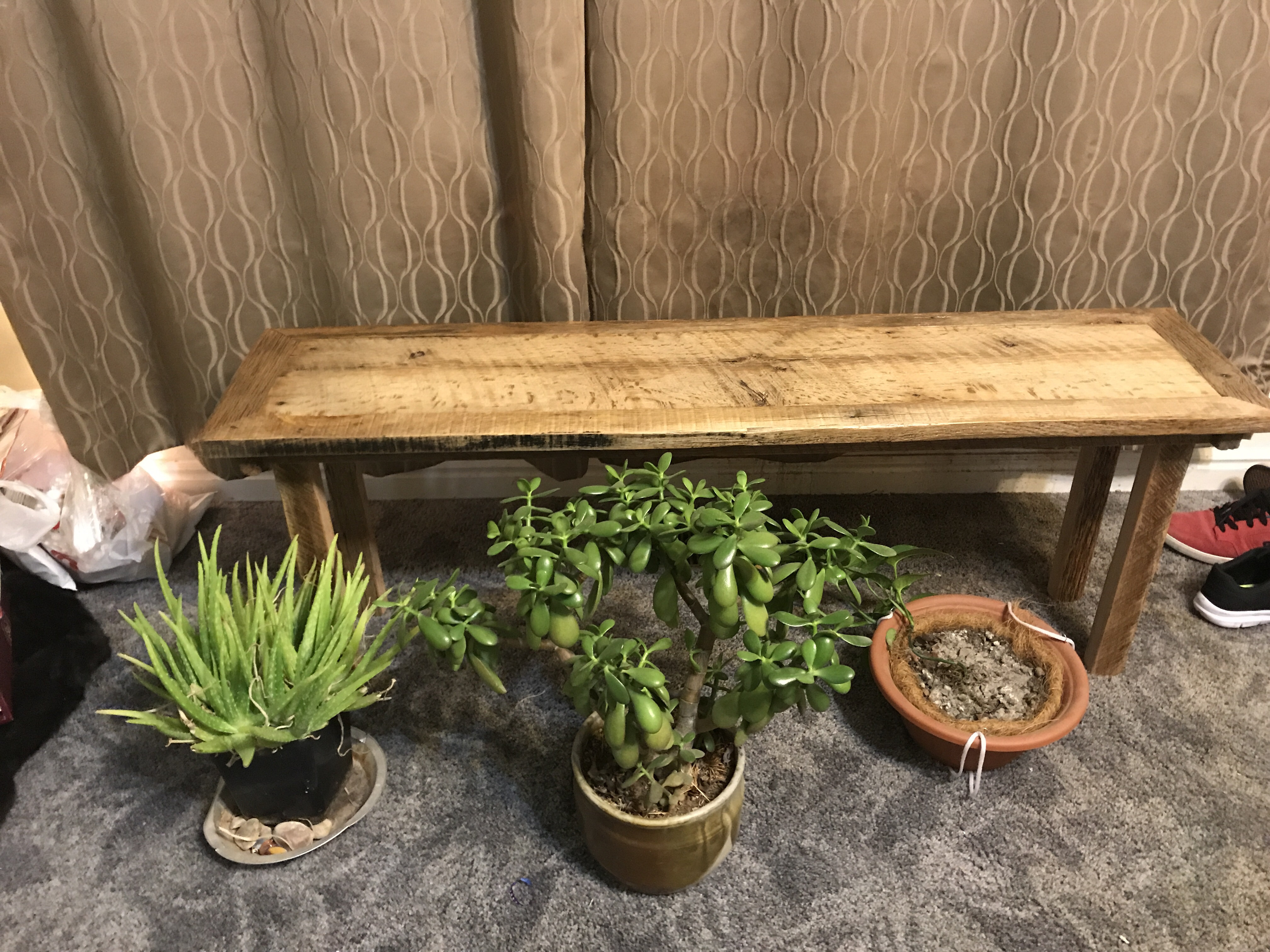 An oak barn wood bench sitting in front of a tan curtain with plants sitting on blue carpet in front of it
