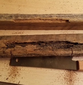 Two pieces of reclaimed oak wood with the top piece featuring a chip out, and the bottom piece a partially sawed out to fix the top piece, and a hand saw below them both.