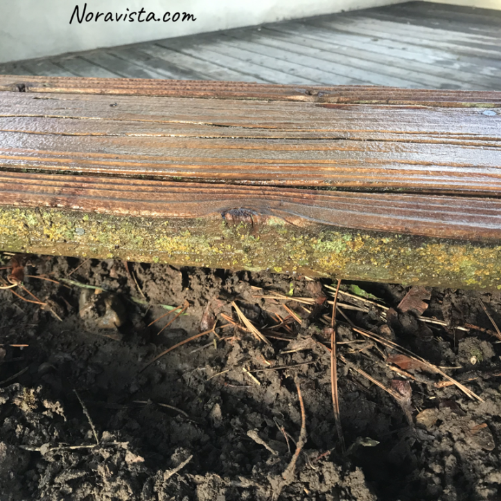 A redwood planter box with the inside molding showing moss growing on it, and the top with new wood after being power washed