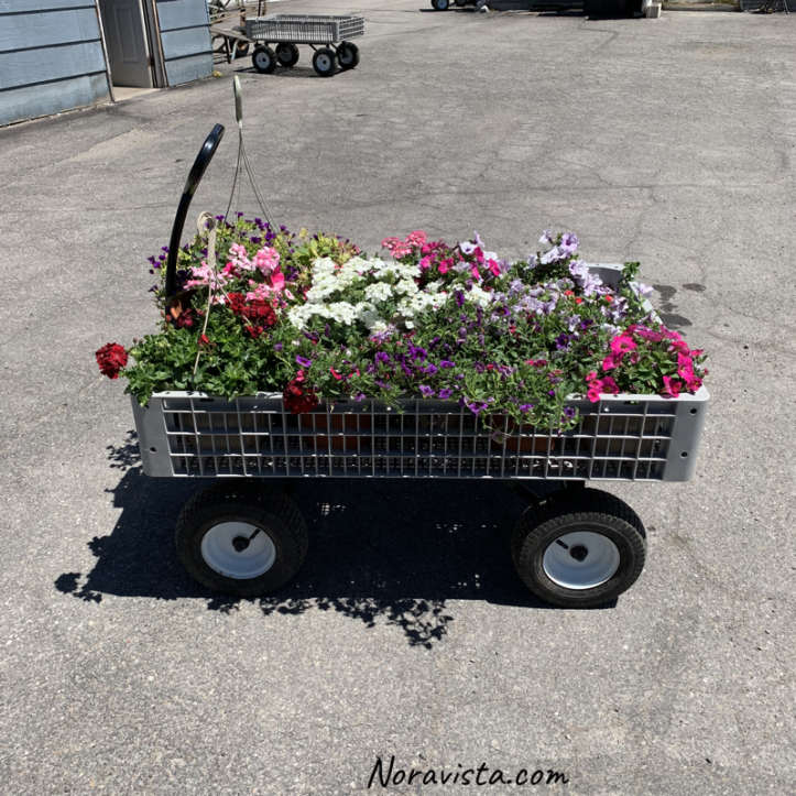 A cart at a greenhouse full of flowers