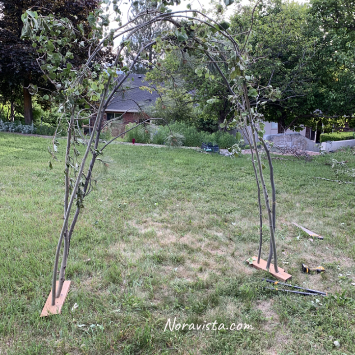 A wedding arch made of tree limb branches